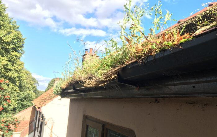 Blocked gutters cause damage